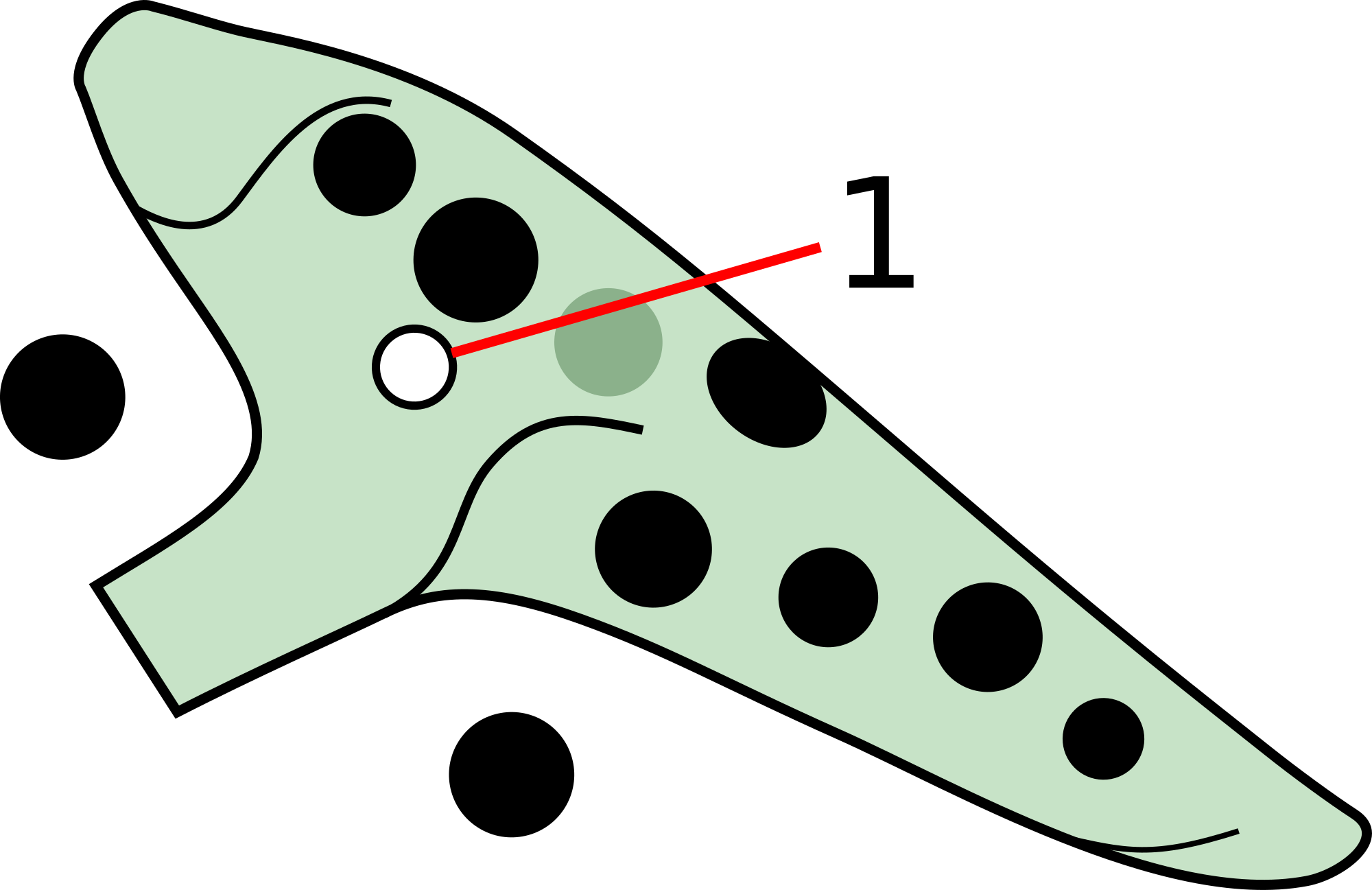 An 11 hole ocarina with a subhole next to the left middle finger. On an 11 hole ocarina, the subhole can be positioned on either the left or right middle finger