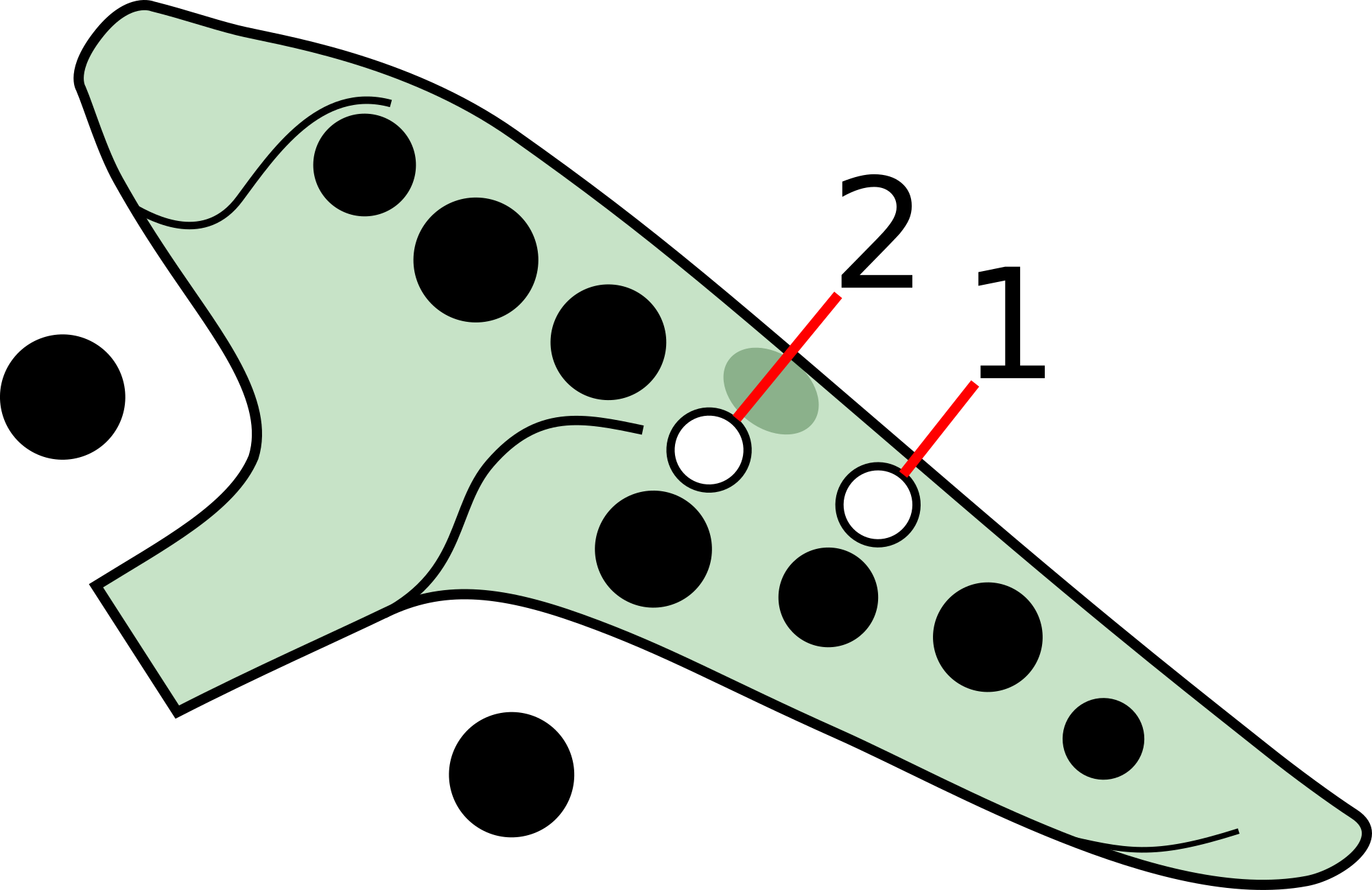 A 12 hole ocarina with japanese fingering, the subholes are on the right hand index and middle fingers