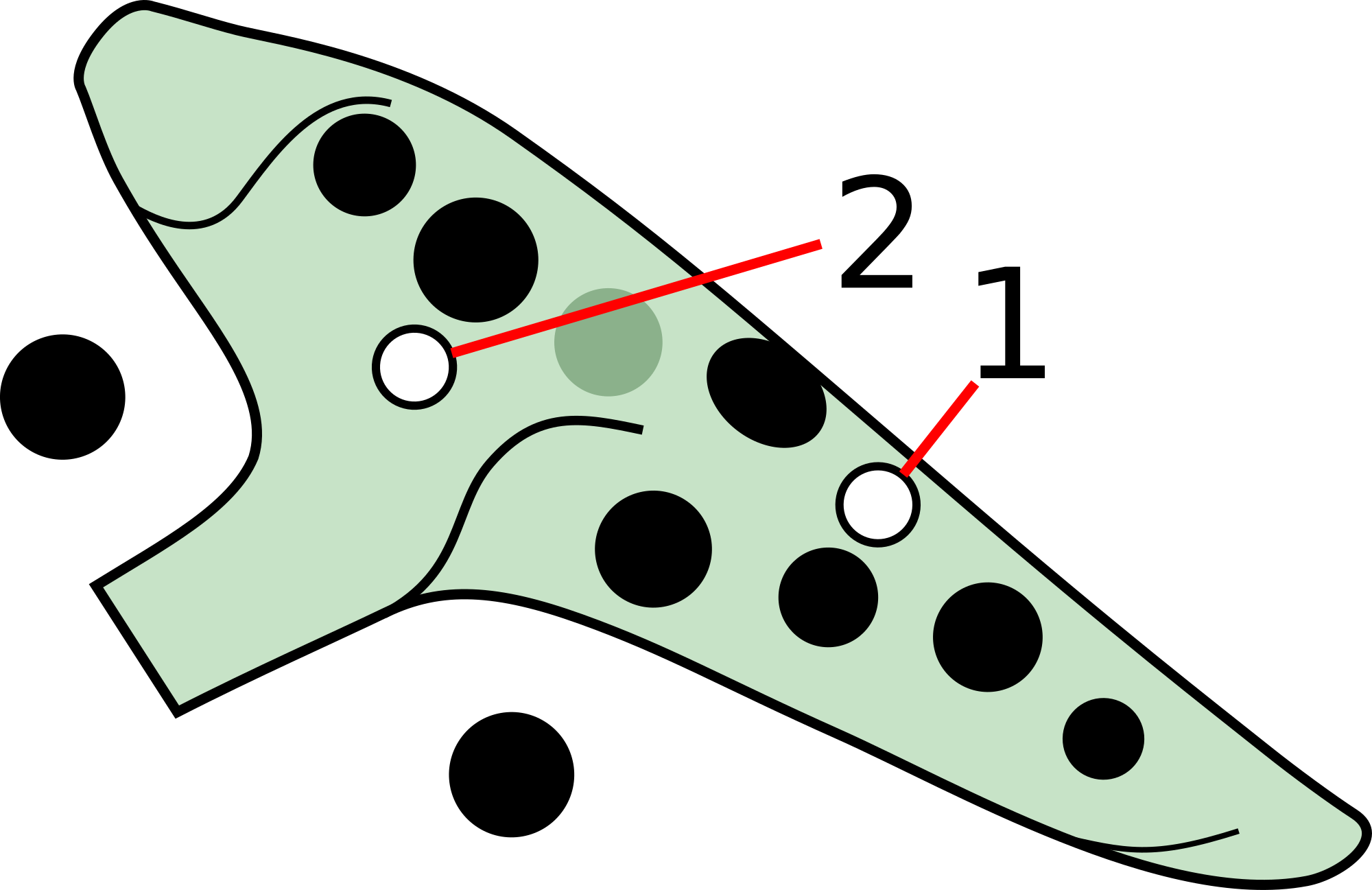 A 12 hole ocarina with japanese fingering, the subholes are on the right hand middle and left hand middle finger